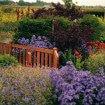 Hardhout tuinpoortje 90 x 100 cm. Type: hekpoort 11 sfeer